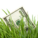 Cash for Grass